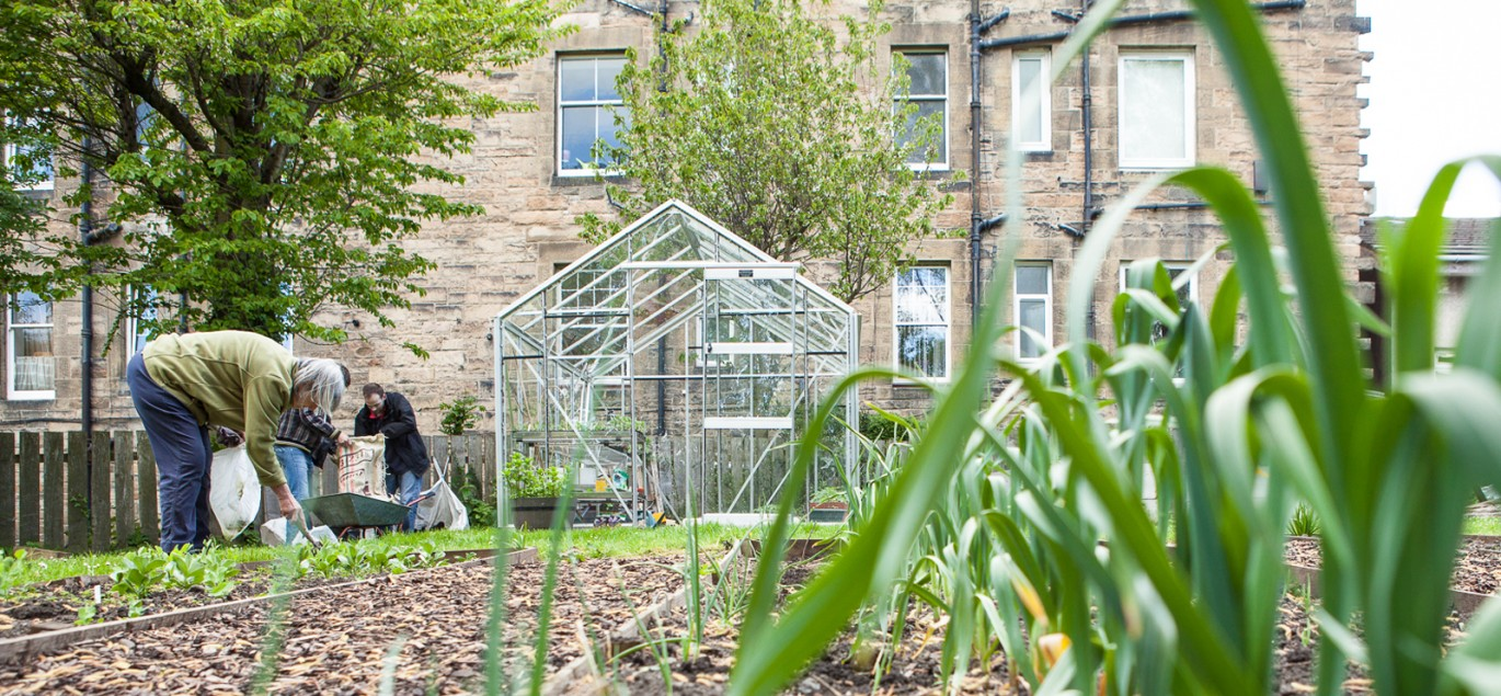 Growing skills in the kitchen and garden
